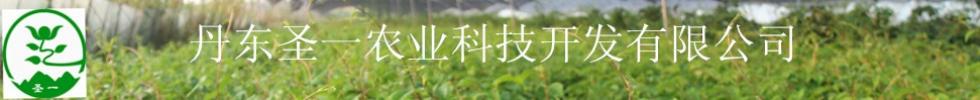 丹东偏门赚钱農業科技开发有限公司