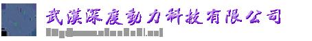 武汉深度动力科技有限公司
