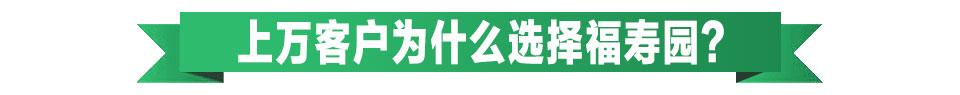 河南福寿园简介