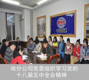 哈分公司党委组织学习党的十八届五中全会精神
