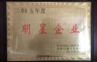 2005年度明星企业