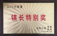 2006年度镇长特别奖