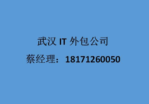 武漢IT外包公司.png