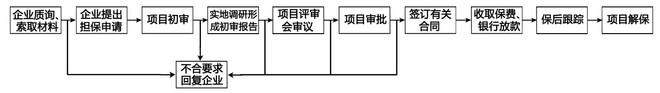 融资担保业务流程.jpg