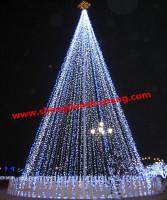 供应大型圣诞树
