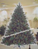 圣诞树供应 圣诞树生产